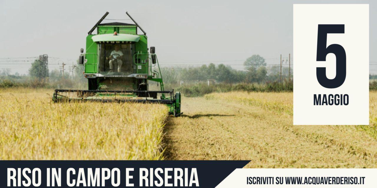 Il Rice Educational dal campo alla riseria apre le iscrizioni